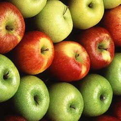 Satılık 45 Ton starkirimson elma